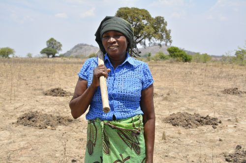 Women take lead in sustainable farming for Africa's food security